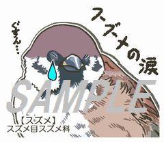 スズメの涙.jpg